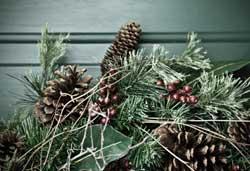 Make Christmas Wreaths